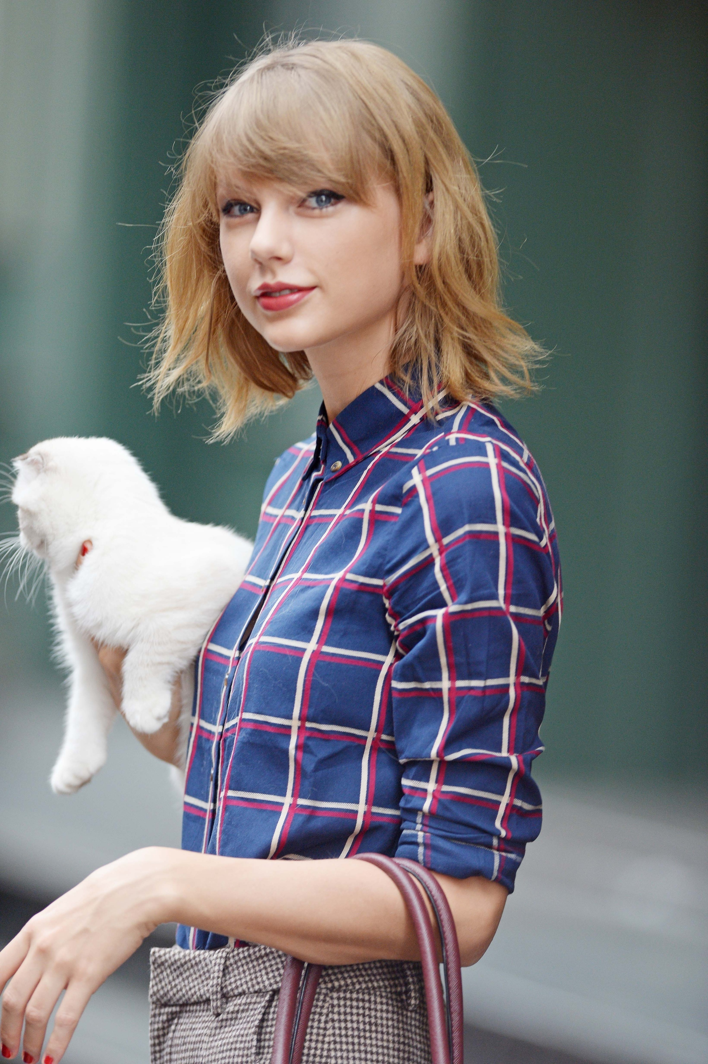 die taylor swifts cat - HD 1450×2179